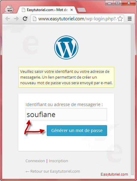 reinitialiser mot de passe wordpress 8