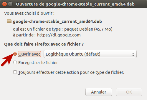 03 google chrome ubuntu